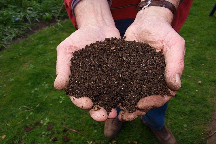 Produce organic plant food powder