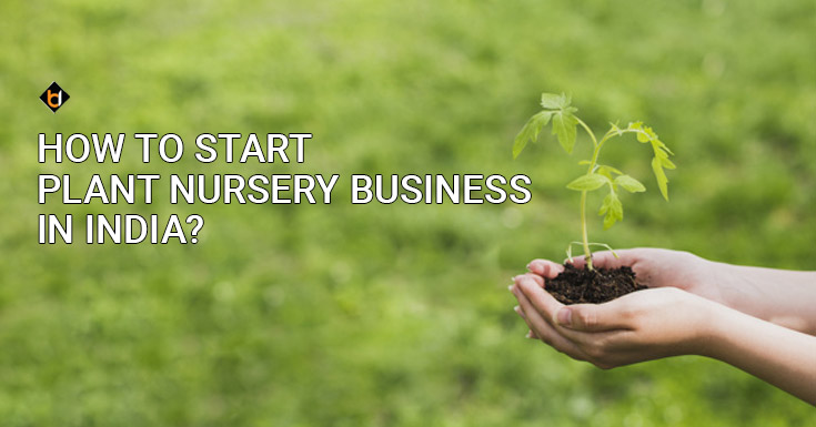 How To Start Plant Nursery Business in India?