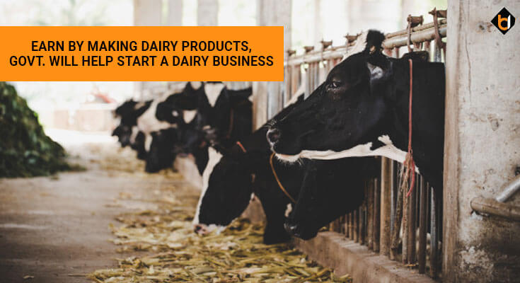 Earn by Making Dairy Products