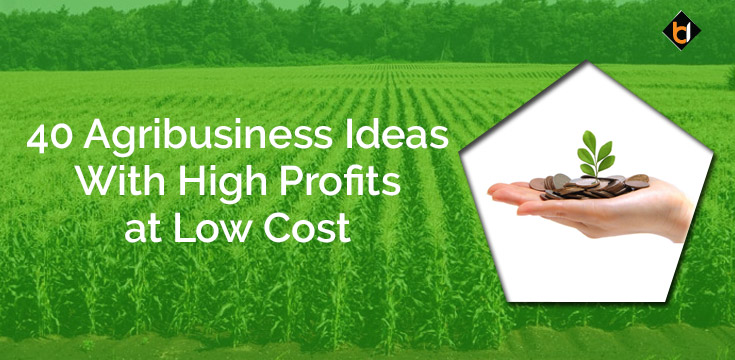 40 Agribusiness Ideas With High Profits at Low Cost