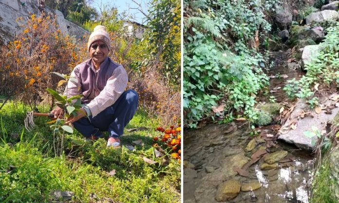 Planting plants and living for 30 years made the village dry waterfall