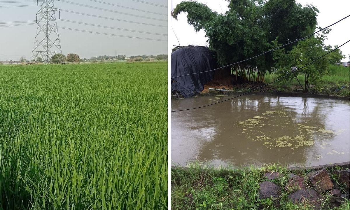Telangana Farmer