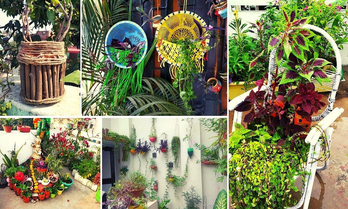 Zero Budget Gardening